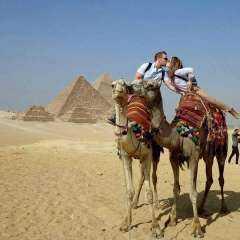 مصر من بين 200 وجهة سياحية تحصل على خاتم السفر الآمن