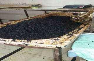 توقف 40 مصنعا لإنتاج المعسل لعدم تجديد السجلات الصناعية